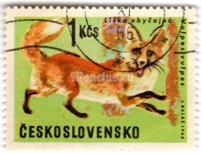 "марка Чехословакия 1 крона ""Red Fox (Vulpes vulpes)"" 1966 год Гашение"