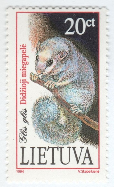 "марка Литва 20 центес ""Edible Dormouse (Glis glis)"" 1994 год"