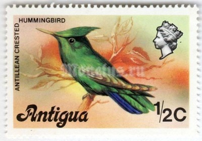 "марка Антигуа 1/2 цента ""Antillean Crested Hummingbird (Orthorhynchus cristatus)"" 1976 год"
