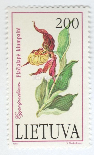 "марка Литва 200 копеек ""Cypripedium calceolus"" 1992 год"
