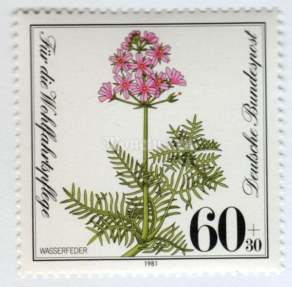 "марка ФРГ 60+30 пфенниг ""Water gillyflower : Water violet"" 1981 год"