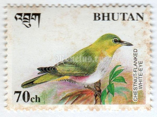 "марка Бутан 70 чертум ""Chestnut-flanked White-eye (Zosterops erythropleura)"" 1998 год"
