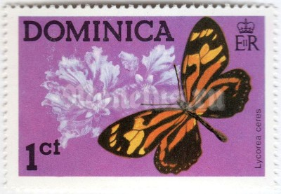 "марка Доминика 1 цент ""Tropical Milkweed Butterfly (Lycorea ceres)"" 1975 год"
