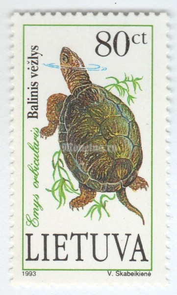 "марка Литва 80 центес ""European Pond Turtle (Emys orbicularis)"" 1993 год"